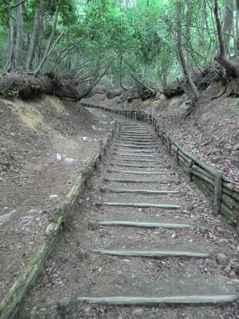 金剛山登山道01