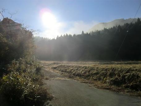 朝靄のけむる里山