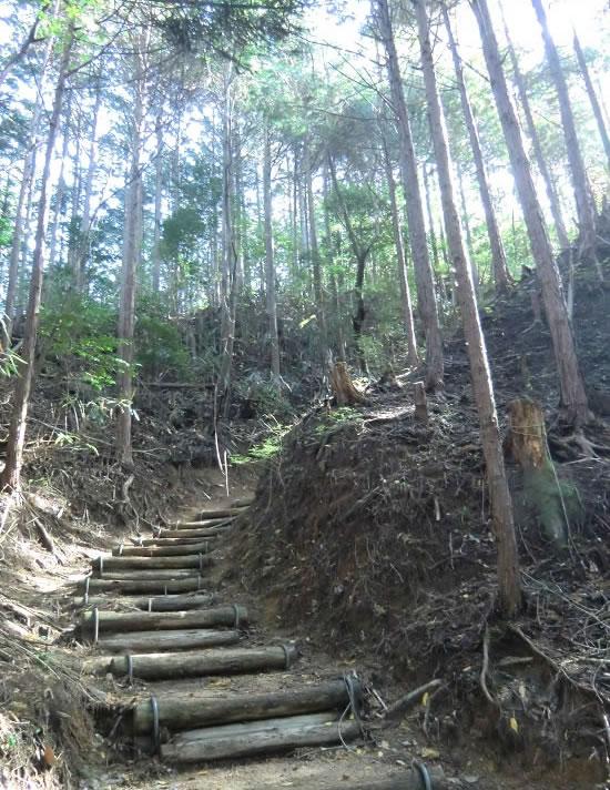 高見山登山04