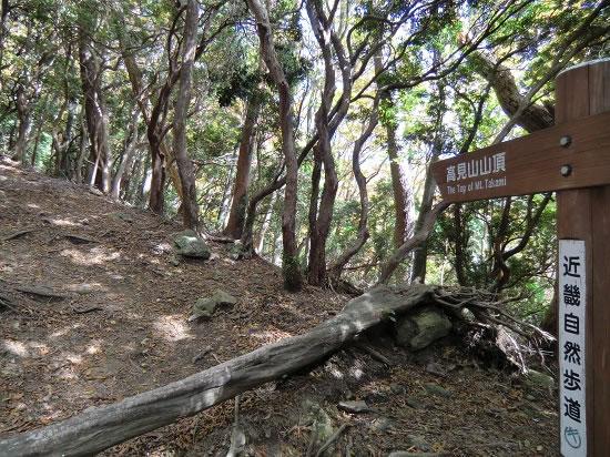 高見山登山09