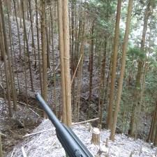 狩りバカ日誌 2015年2月1日(鹿グループ猟)