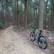 人生初MTB。マウンテンバイクで猟場の林道を走ってきた。