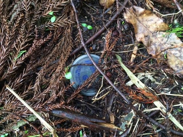 山で見つけたヘンな物2