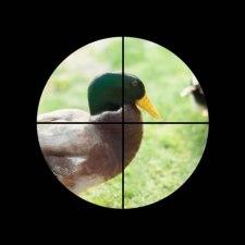 【猪・鹿・鴨など】銃猟・獲物別狙うべき場所はここだ!【決定版?】