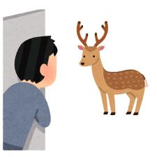 youは何しにそんな所へ?野生動物の意外性と頑丈さを再確認してみる