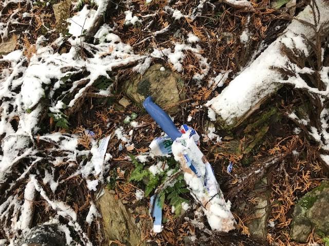 格安皮剥ぎナイフを山中でのイノシシ解体で使ってみた。