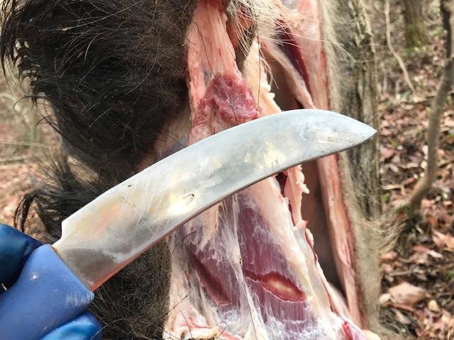 皮剥ぎナイフ(スキナー)