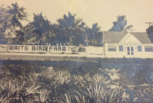 Waite's Bird Farm