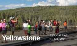 Yellowstone National Park Webcams | Bozeman Luxury Real Estate