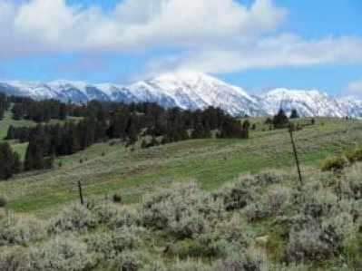ranches for sale in Montana 2
