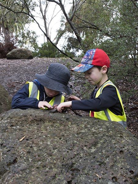 Children looking at millipede on rock at Batman Park Kindergarten bush kinder