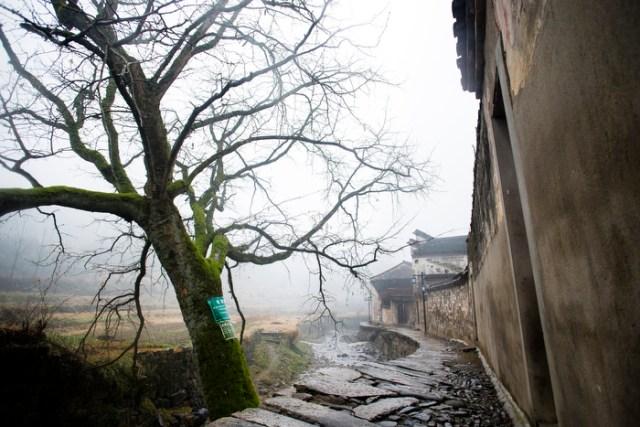 A scene in the village.