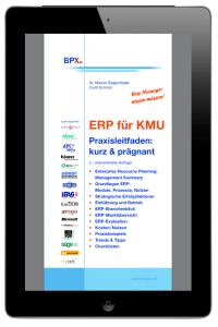 12-ebook-ERP