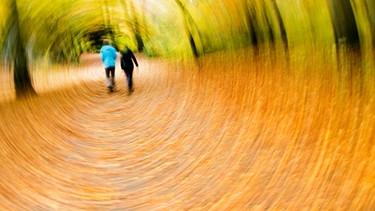 Menschen im Wald | Bild: picture-alliance/dpa/Julian Stratenschulte
