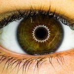Le Recruteur Medical : devenir ophtalmologue