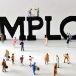 emploi annuaire emploi