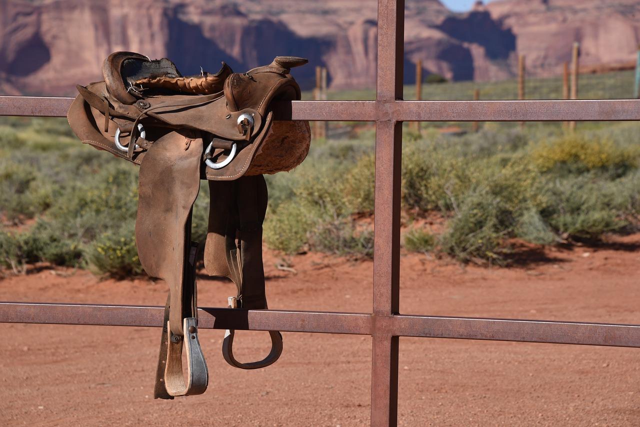 Taureau-rodeo-mecanique : pour jouer au cow-boy