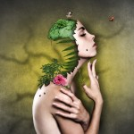 Cosmétiques Bio : boutique en ligne de produits naturels