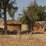 Afrique sur 7 : suivez en temps réel toute l'actualité du Burkina Faso