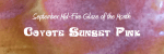 Coyote Sunset Pink – September Mid-Fire glaze of the month