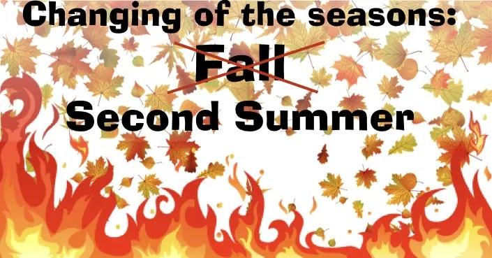 September Second Summer Special – firing supplies