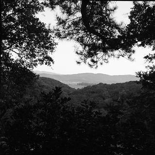 lubitel_landscape