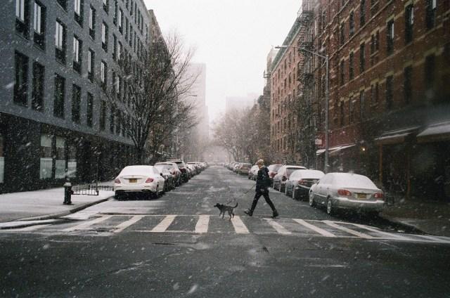 New York Snow Blizzard