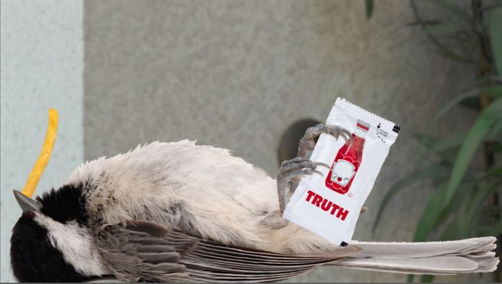 Dead bird lying on back with ketchup pack in his claws