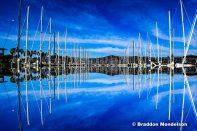 Floating Harbor