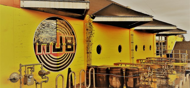 Hopworks Urban Brewery Proves Good Values Make Good Business