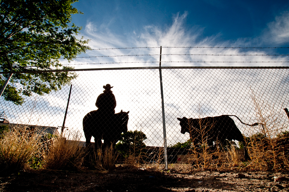 a photo of cowboy and cow motiff silhouettes cut in iron behind a chainlink fence with a tree and dramatic western clouds, white, and sky, blue.
