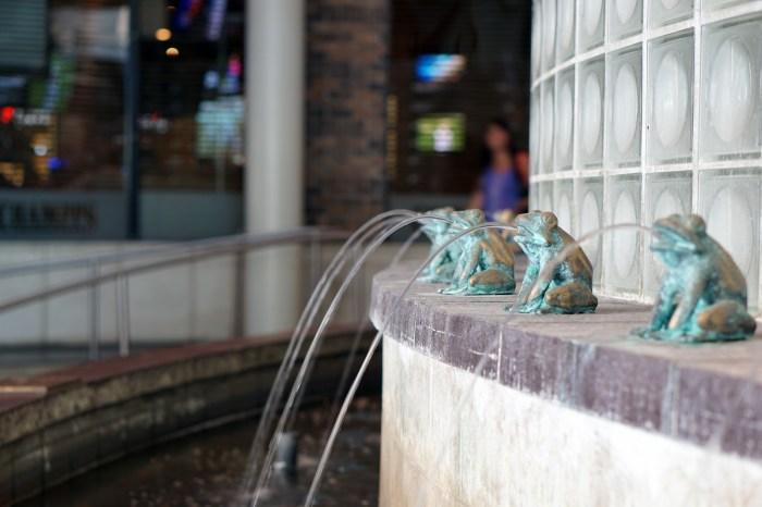 September 3rd: Frogs