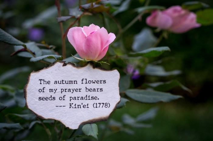 October 9th: Flowering