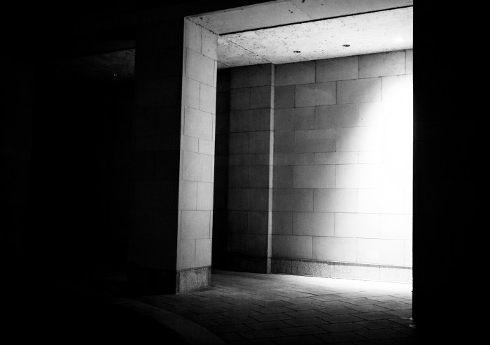 Jan. 23: Light and Dark