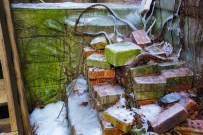 Jan. 12th: Bricks, Ice, and Roots