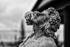 February 3rd: Broken Statue