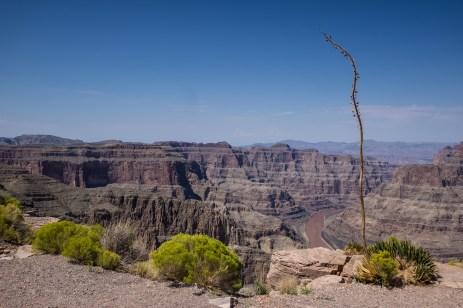 Oct 5: Grand Canyon