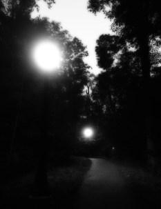 Sept 15: Night Path