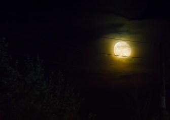 Dec 19: Moon