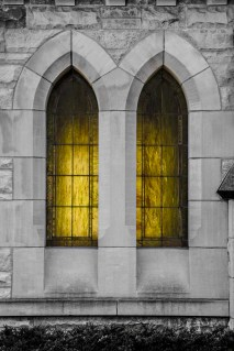 March 8: Sanctuary Windows