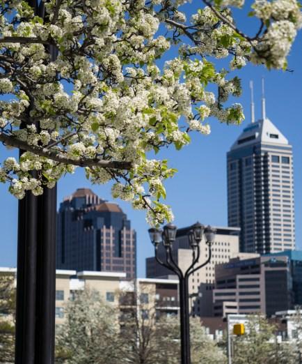 April 29: Indy