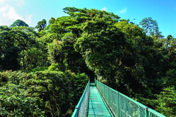 Quetzal Shutterstock 549082930 Copy nicaragua best experiences