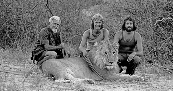 Christian the Lion by Tony Fitzjohn (GAWPT)