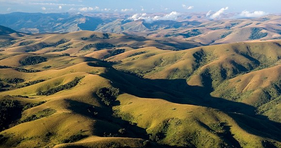Nyika National Park, Malawi by Dana Allen, Central African Wilderness Safaris