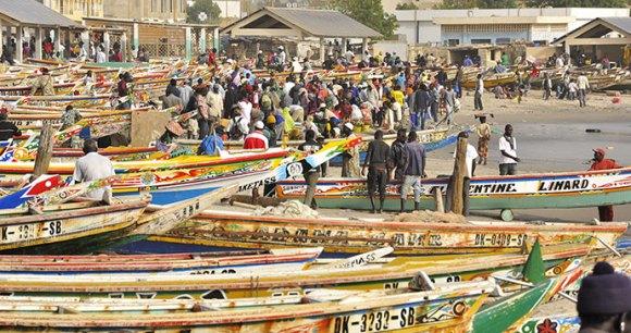 Fish market Dakar Senegal by elisabethandi Dreamstime best markets in the world