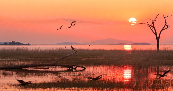 Sunset Lake Kariba Zimbabwe by Paula French Shutterstock