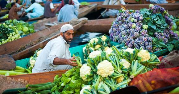 Floating market Dal Lake Srinagar Kashmir India Pius Lee Shutterstock