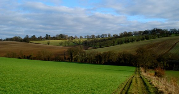 Chilterns Area of Outstanding Natural Beauty Buckhinghamshire Christian Guthier, Wikimedia Commons