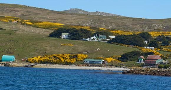 Settlement, West Point Island, Falkland Islands by JeremyRichards, Shutterstock
