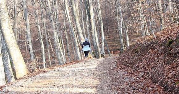 running, Germia national park, Prishtina, Kosovo by Dini Dedinca, Wikimedia Commons